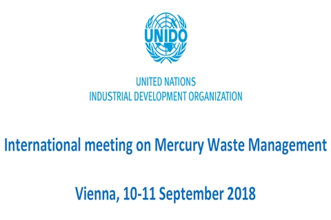 International meeting on Mercury Waste Management