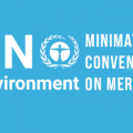 Minamata Convention - COP2