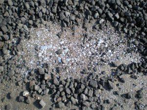 mercury in soil