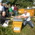 Beefuture - A new home for our beehive