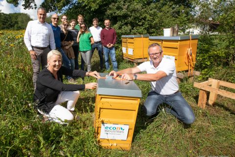 Beefuture – A new home for our beehive