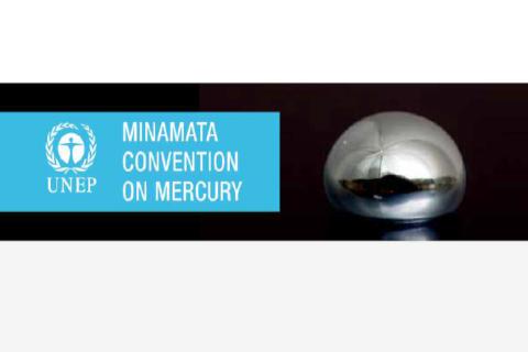 Minamata Convention - COP 3